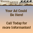 Contact us to place your ad here!